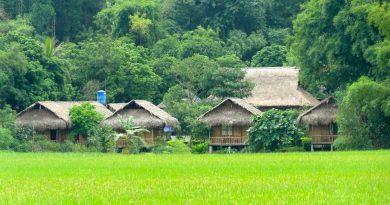 Top 10 Nhà Sàn ở Bản lác Mai Châu Hòa Bình